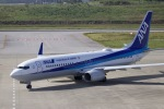 akinarin1989さんが、新石垣空港で撮影した全日空 737-881の航空フォト(写真)