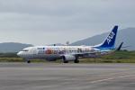 鈴鹿@風さんが、新石垣空港で撮影した全日空 737-881の航空フォト(写真)