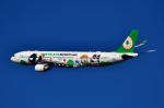 フォト太郎さんが、小松空港で撮影したエバー航空 A330-302Xの航空フォト(写真)