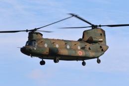 レガシィさんが、宇都宮飛行場で撮影した陸上自衛隊 CH-47JAの航空フォト(写真)