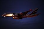 ミソカツさんが、成田国際空港で撮影したエミレーツ航空 A380-861の航空フォト(写真)