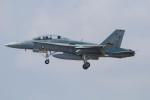 Koenig117さんが、新千歳空港で撮影したオーストラリア空軍 F/A-18B Hornetの航空フォト(写真)