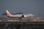 飛行機ゆうちゃんさんが、羽田空港で撮影した日本航空 737-846の航空フォト(写真)