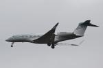 camelliaさんが、成田国際空港で撮影したウィルミントン・トラスト・カンパニー G650 (G-VI)の航空フォト(写真)