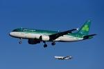 Frankspotterさんが、フランクフルト国際空港で撮影したエア・リンガス A320-214の航空フォト(写真)