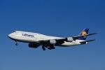 フランクフルト国際空港 - Frankfurt Airport [FRA/EDDF]で撮影されたルフトハンザドイツ航空 - Lufthansa [LH/DLH]の航空機写真