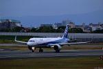 Jin Bergqiさんが、伊丹空港で撮影した全日空 A321-272Nの航空フォト(写真)