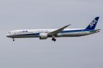 xingyeさんが、成田国際空港で撮影した全日空 787-10の航空フォト(写真)
