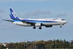 saoya_saodakeさんが、成田国際空港で撮影した全日空 737-881の航空フォト(写真)