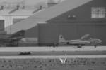 ヒロリンさんが、小松空港で撮影した航空自衛隊 T-33Aの航空フォト(写真)