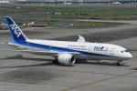turenoアカクロさんが、羽田空港で撮影した全日空 787-8 Dreamlinerの航空フォト(写真)