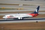 採れたてほしいもさんが、仁川国際空港で撮影した山東航空 737-85Nの航空フォト(写真)