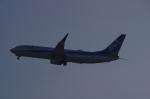 ふみたびさんが、鹿児島空港で撮影した全日空 737-881の航空フォト(写真)