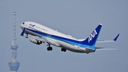 オキシドールさんが、羽田空港で撮影した全日空 737-881の航空フォト(飛行機 写真・画像)