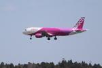 OMAさんが、成田国際空港で撮影したピーチ A320-214の航空フォト(飛行機 写真・画像)
