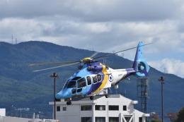 蒼い鳩さんが、松本空港で撮影した東邦航空 EC155Bの航空フォト(飛行機 写真・画像)