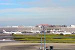 まいけるさんが、羽田空港で撮影した日本航空 A350-941XWBの航空フォト(写真)
