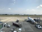 ふみたびさんが、鹿児島空港で撮影した全日空の航空フォト(写真)