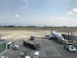 ふみたびさんが、鹿児島空港で撮影した全日空の航空フォト(飛行機 写真・画像)