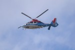 kumagorouさんが、宮城県角田市(角田中央公園)で撮影した川崎市消防航空隊 AS365N3 Dauphin 2の航空フォト(写真)