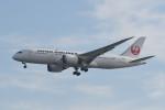 kuro2059さんが、羽田空港で撮影した日本航空 787-8 Dreamlinerの航空フォト(写真)