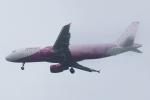 木人さんが、成田国際空港で撮影したピーチ A320-214の航空フォト(写真)