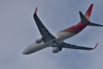 we love kixさんが、関西国際空港で撮影した深圳航空 737-87Lの航空フォト(写真)
