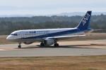 k-spotterさんが、能登空港で撮影した全日空 A320-211の航空フォト(写真)