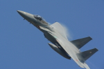 mukku@RJFKさんが、新田原基地で撮影した航空自衛隊 F-15DJ Eagleの航空フォト(写真)