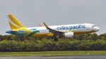 FlyingMonkeyさんが、成田国際空港で撮影したセブパシフィック航空 A320-214の航空フォト(写真)