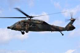 kumagorouさんが、宮城県角田市(角田中央公園)で撮影した陸上自衛隊 UH-60JAの航空フォト(飛行機 写真・画像)