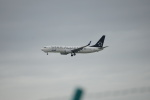 レドームさんが、羽田空港で撮影した全日空 737-881の航空フォト(写真)