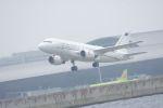 みきてぃさんが、関西国際空港で撮影したイタリア空軍 A319-115CJの航空フォト(写真)
