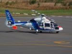 ここはどこ?さんが、札幌飛行場で撮影したオールニッポンヘリコプター AS365N2 Dauphin 2の航空フォト(写真)