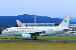 臨時特急7032Mさんが、熊本空港で撮影したコートジボワール政府 A319-133X CJの航空フォト(写真)