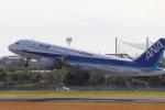 小型機専門家さんが、高知空港で撮影した全日空 A320-211の航空フォト(写真)