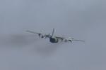 小型機専門家さんが、高知空港で撮影した航空自衛隊 C-130H Herculesの航空フォト(写真)