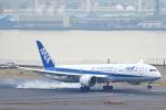 シグナス021さんが、羽田空港で撮影した全日空 787-9の航空フォト(写真)