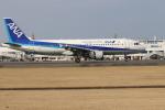 EosR2さんが、鹿児島空港で撮影した全日空 A320-211の航空フォト(写真)