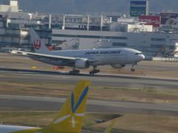 ふみたびさんが、福岡空港で撮影した日本航空の航空フォト(飛行機 写真・画像)