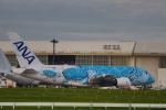 ま~くんさんが、成田国際空港で撮影した全日空 A380-841の航空フォト(写真)
