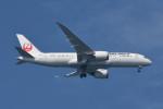 kuro2059さんが、中部国際空港で撮影した日本航空 787-8 Dreamlinerの航空フォト(写真)