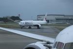 double_licenseさんが、那覇空港で撮影した日本航空 777-346の航空フォト(写真)