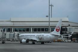 double_licenseさんが、那覇空港で撮影した日本トランスオーシャン航空 737-8Q3の航空フォト(写真)