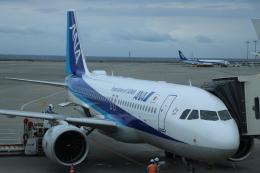 double_licenseさんが、那覇空港で撮影した全日空 A320-271Nの航空フォト(写真)