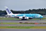 @たかひろさんが、成田国際空港で撮影した全日空 A380-841の航空フォト(写真)