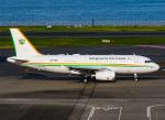 SKY TEAM B-6053さんが、羽田空港で撮影したコートジボワール政府 A319-133X CJの航空フォト(写真)