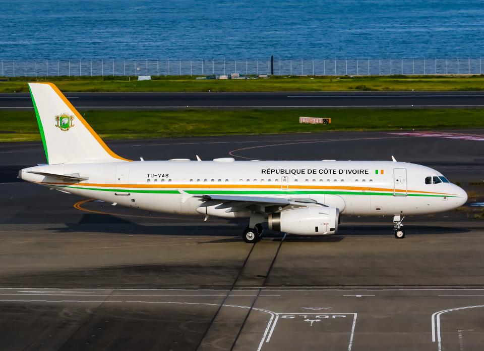 SKY TEAM B-6053さんのコートジボワール政府 Airbus A319 (TU-VAS) 航空フォト