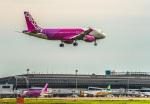 Cygnus00さんが、仙台空港で撮影したピーチ A320-214の航空フォト(写真)