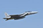 ワイエスさんが、新田原基地で撮影した航空自衛隊 F-15DJ Eagleの航空フォト(写真)